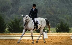 Horseback Riding in Brisbane
