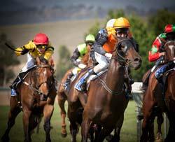 Racing Carnival