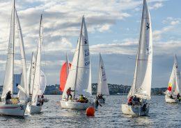 Sporting Events In Sydney Feb & Mar 2019